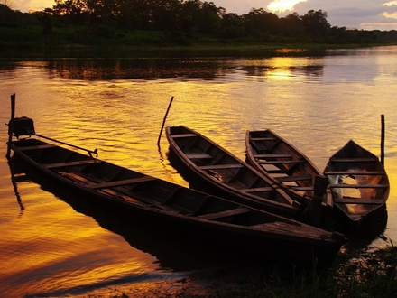 Planes al Amazonas