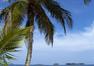 Paquete Riu Playa Blanca Todo Incluido