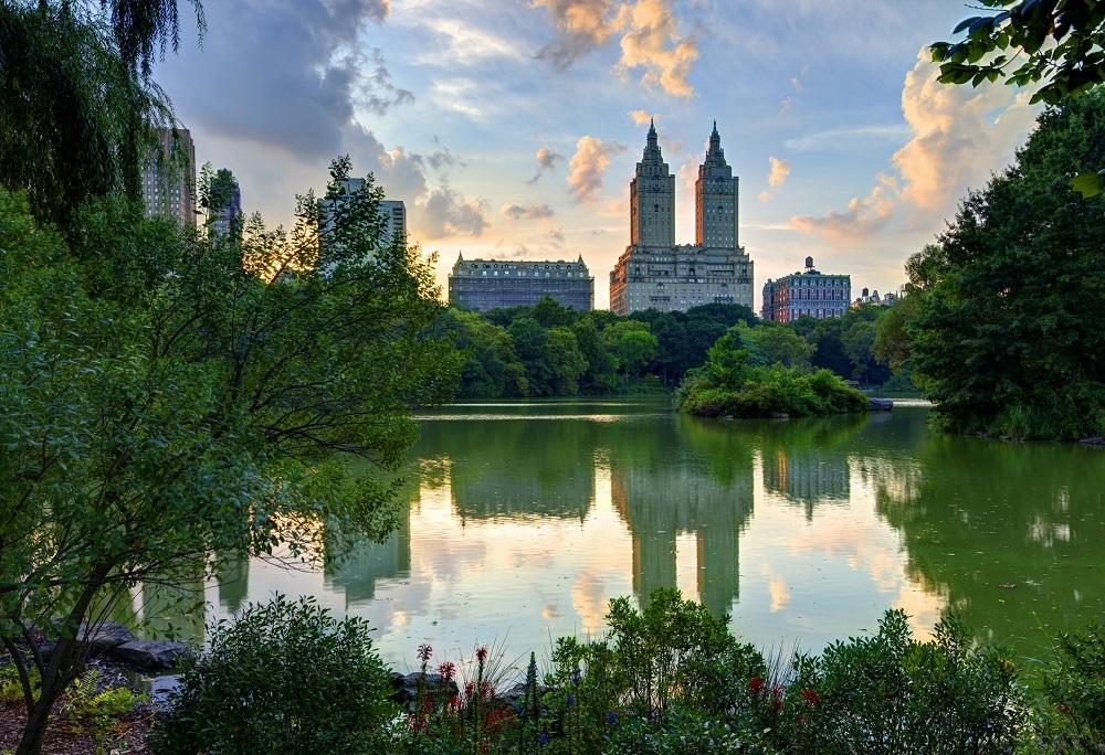 parque central, new york